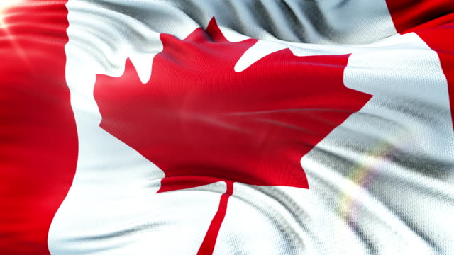 flag of canada waving on sun. seamless loop with highly detailed fabric texture. loop ready in 4k resolution. - canada flag stock videos & royalty-free footage