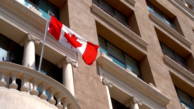 Flag of Canada waving on the wind. Red and White, the colors of the Maple Leaf