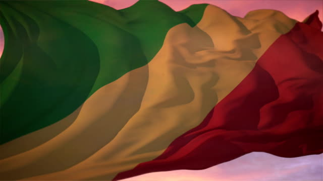 Flag of Congo video