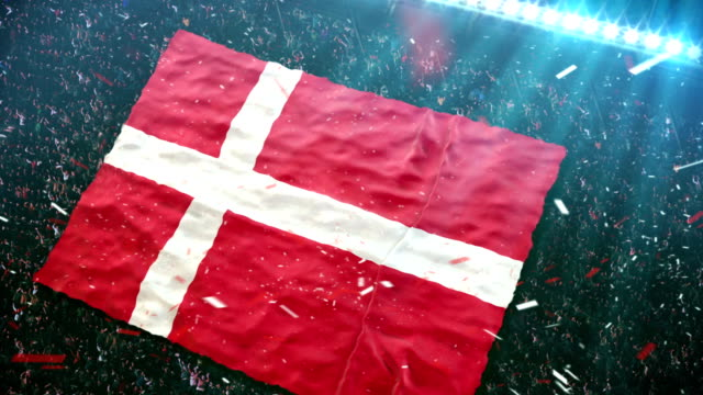 Flag of Denmark at the stadium video