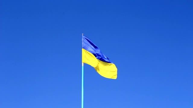 Flag of free Ukraine video