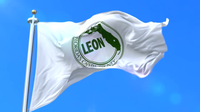 Flag of Leon, county of the state of Florida, in United States - loop video