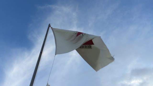 minas gerais bayrağı, brezilya sallayarak - minas gerais eyaleti stok videoları ve detay görüntü çekimi