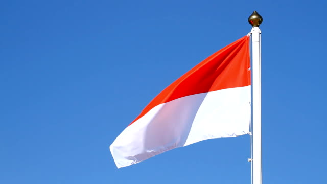 Flag of Monaco video