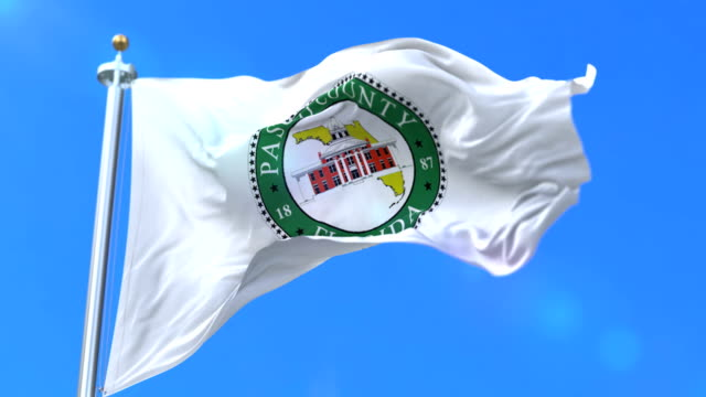 Flag of Pasco county, state of Florida, in United States - loop video