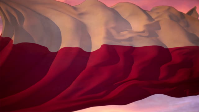 Flag of Poland video