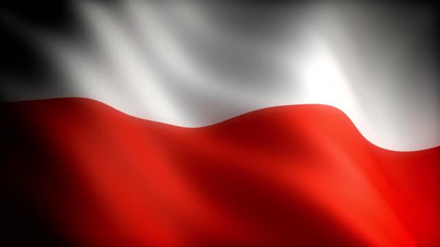 flagge von polen - polnische kultur stock-videos und b-roll-filmmaterial