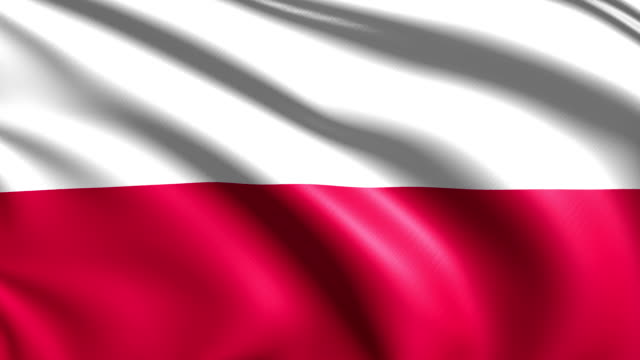 flag of Poland (loop) video