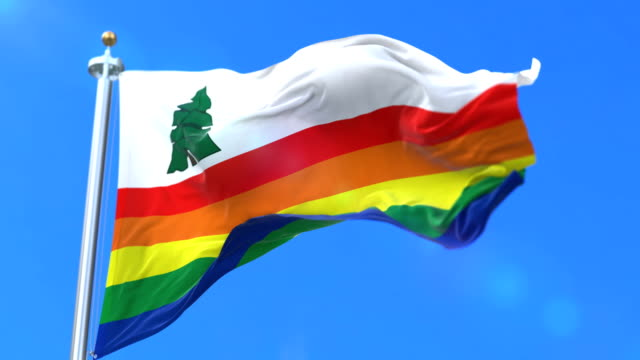 Flag of Santa Cruz county, state of California in United States - loop video