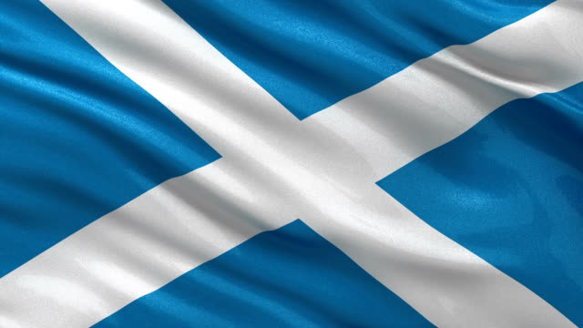 Flag of Scotland seamless loop Flag of Scotland gently waving in the wind. Loop ready file with highly detailed fabric texture. scotland stock videos & royalty-free footage