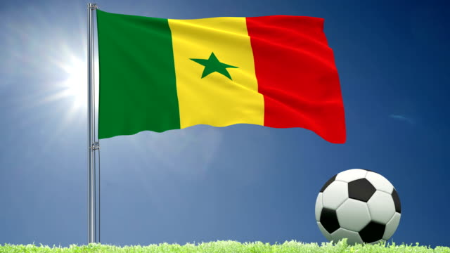 flag of senegal fluttering and a football rolls on the lawn, 3d rendering, 4k footage - dakar video stock e b–roll