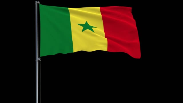 flag of senegal on a flagpole on a transparent, 4k prores 4444 footage with alpha - dakar video stock e b–roll