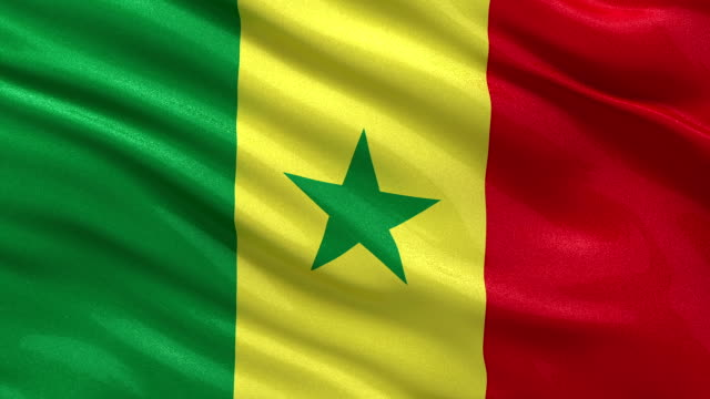 Flag of Senegal - seamless loop Flag of Senegal gently waving in the wind. Loop ready file with high quality fabric material. senegal stock videos & royalty-free footage