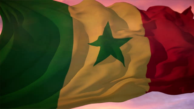 bandiera del senegal - dakar video stock e b–roll