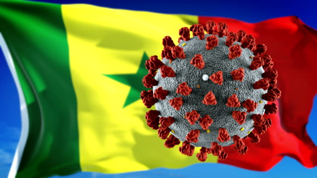 Flag of Senegal with outbreak deadly coronavirus covid-19. Loopable Novel coronavirus outbreak and quarantine concept. senegal stock videos & royalty-free footage