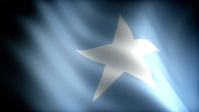 Flag of Somalia Flag of Somalia (seamless) horn of africa stock videos & royalty-free footage