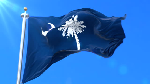 Flag of South Carolina state, region of the United States - loop Flag of american state of South Carolina, region of the United States, waving at wind - loop south carolina stock videos & royalty-free footage
