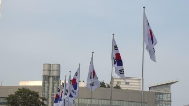 güney kore bayrağı gün boyunca çırparak - cumhuriyet günü stok videoları ve detay görüntü çekimi