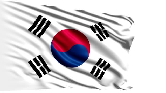 flag of south korea (loop) - saffron on white bildbanksvideor och videomaterial från bakom kulisserna