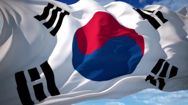 Flag of South Korea video