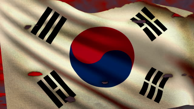 Flag of South Korea waving at battlefield video