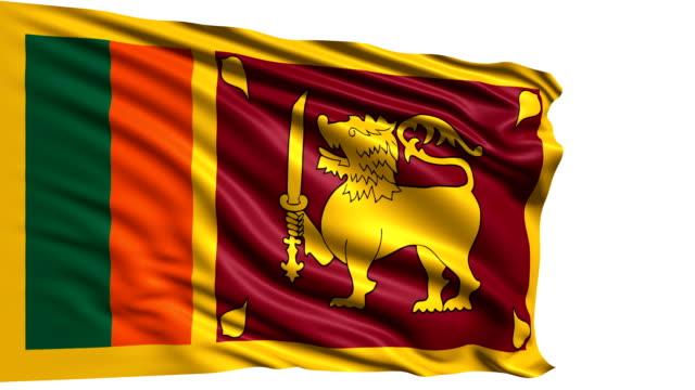 flag of sri lanka (loop) - saffron on white bildbanksvideor och videomaterial från bakom kulisserna