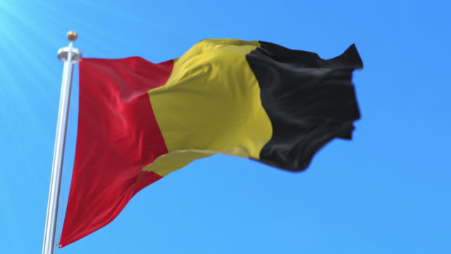 flag of the capital city of besançon, france. loop - formaggio comté video stock e b–roll