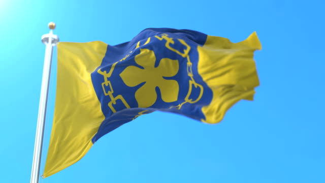 flag of the city of hamilton in ontario, canada. loop - онтарио канада стоковые видео и кадры b-roll