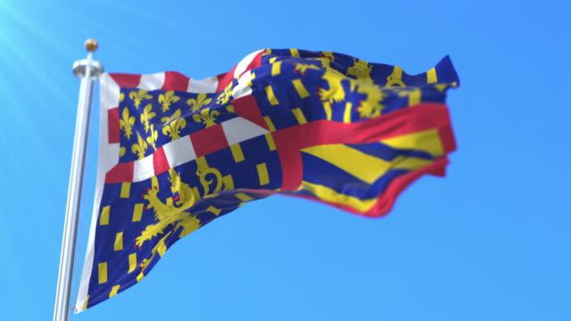 flag of the region of bourgogne-franche-comté, france. loop - formaggio comté video stock e b–roll