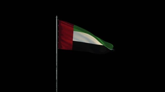 birleşik arap emirlikleri bayrağı bayrak direğinde rüzgar sallayarak, siyah sorunsuz döngü üzerinde gerçekçi 3d animasyon, 20 saniye uzunluğunda (alfa kanal dahildir) - uae flag stok videoları ve detay görüntü çekimi