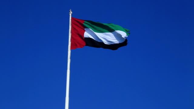 flag of the united arab emirates - uae flag stok videoları ve detay görüntü çekimi