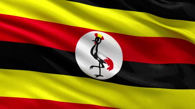 Flag of Uganda seamless loop video