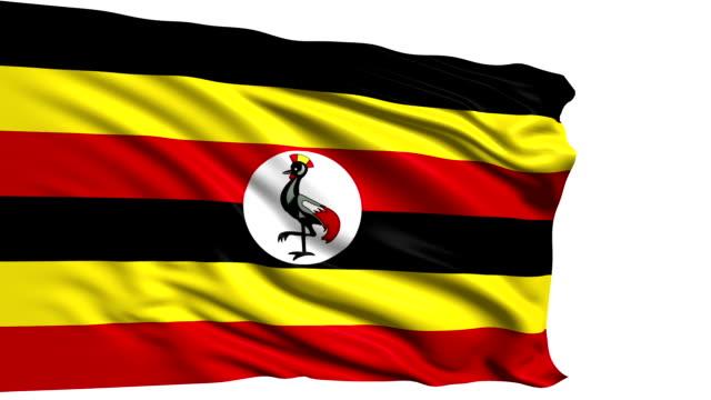 flag of Uganda (loop) video
