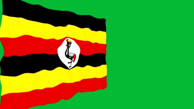 Flag of Uganda. video