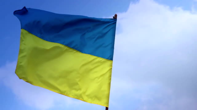Flag of Ukraine on flagstaff. Ukrainian national sigil video