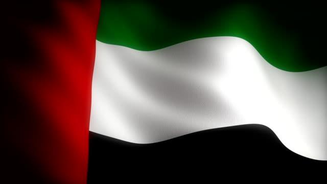 flag of united arab emirates - uae flag stok videoları ve detay görüntü çekimi