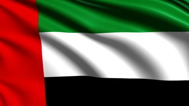 flag of united arab emirates (loop) - uae flag stok videoları ve detay görüntü çekimi