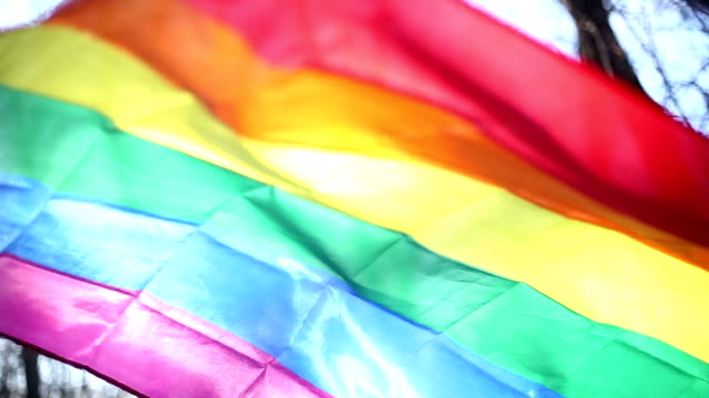 LGBT flag Rainbow fleg LGBT flag Rainbow fleg transsexual stock videos & royalty-free footage
