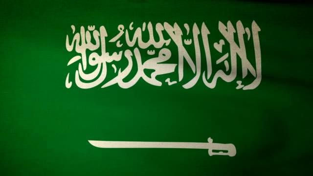flaga arabii saudyjskiej - uae flag filmów i materiałów b-roll