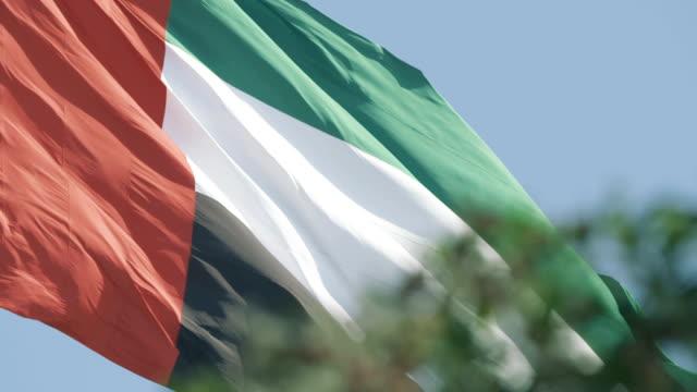 flaga zjednoczonych emiratów arabskich - uae flag filmów i materiałów b-roll