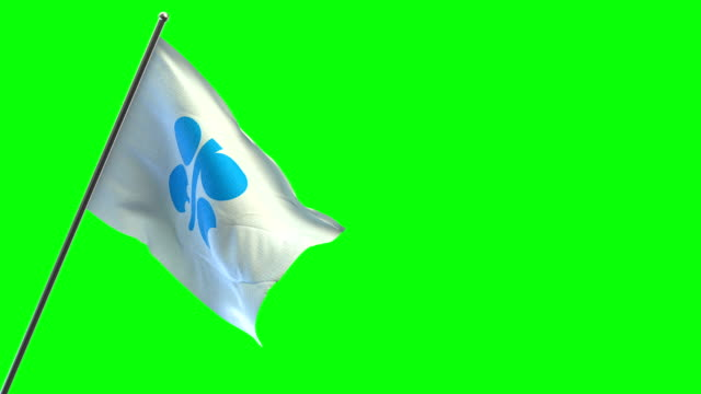 opec flag - cartello economico video stock e b–roll