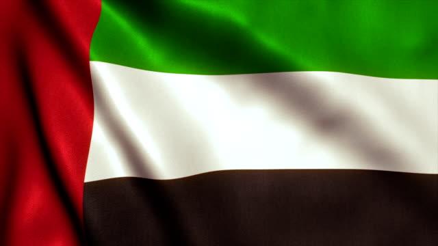 birleşik arap emirlikleri bayrağı video loop - hd - uae flag stok videoları ve detay görüntü çekimi
