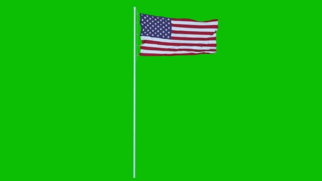 USA Flag Waving on wind on green screen or chroma key background. 4K animation USA Flag Waving on wind on green screen or chroma key background. 4K animation. circa 4th century stock videos & royalty-free footage
