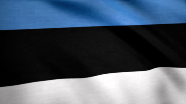Flag with original proportions. Closeup of grunge flag of Estonia Flag with original proportions. Closeup of grunge flag of Estonia. allegory painting stock videos & royalty-free footage