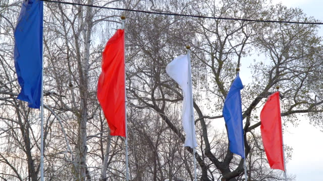 Flags fluttering in the wind video