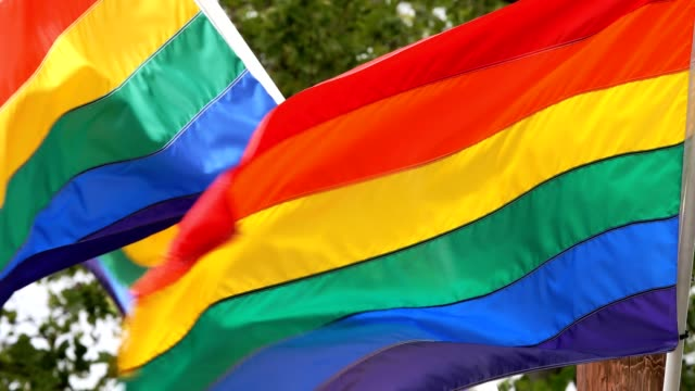 LGBT Flags flying in the wind LGBT flag flying high for all to see. Trees in background. lgbtqi rights stock videos & royalty-free footage