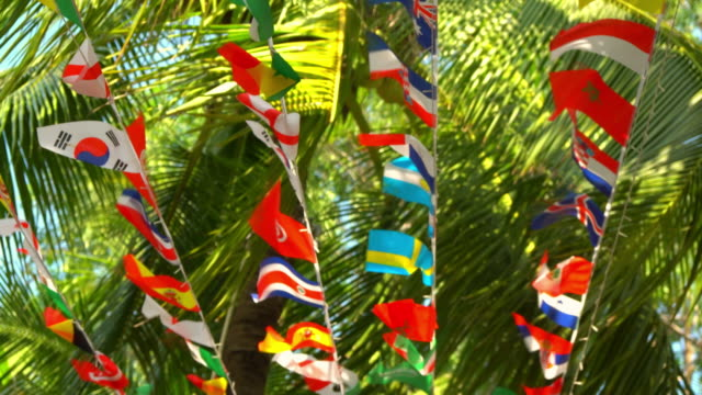 Flags of Different Countries Suspended on Summer Palm Trees
