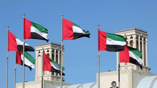 flags of the united arab emirates - abu dhabi stok videoları ve detay görüntü çekimi