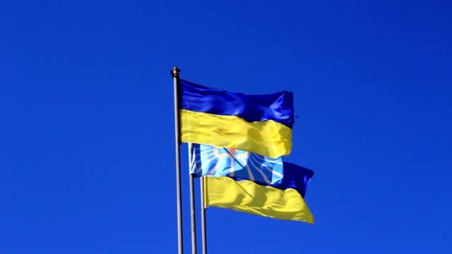 Flags of Ukraine video