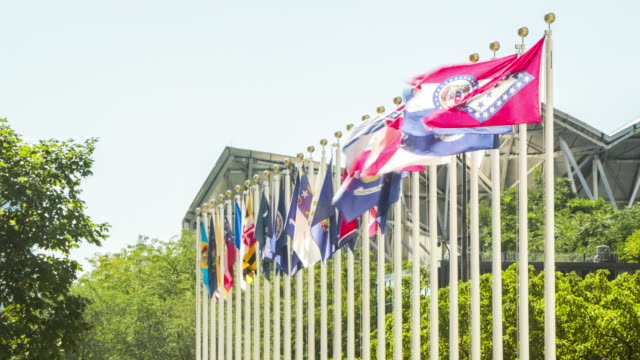Flags Time Lapse Various Countries video